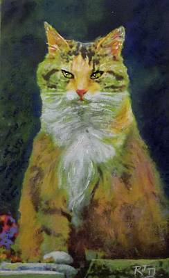 Painting - Mysterious Cat by Richard James Digance