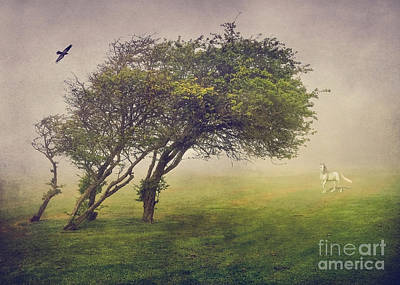 Mysterious Tree Art Print by Svetlana Sewell