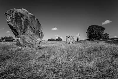 Photograph - Mysterious Wild by Stewart Scott