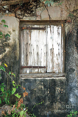 Photograph - Mysterious Window II by Mary Haber