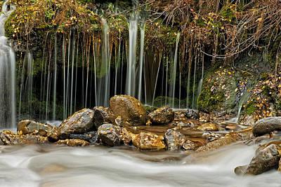 Photograph - Mystery Stream by Scott Read