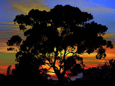 Photograph - Mystery Sunrise by Mark Blauhoefer