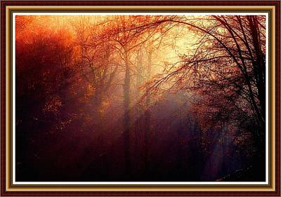 Nirvana - Mystic Forest At Dawn L B With Alternative Decorative Ornate Printed Frame by Gert J Rheeders