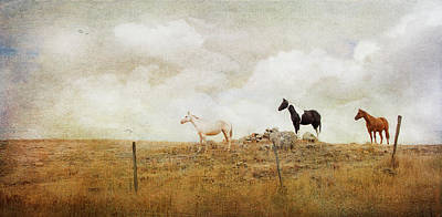 Photograph - Mystic Horses  by Theresa Tahara