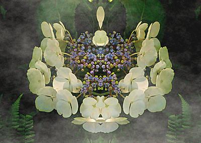 Digital Art - Mystic Hydrangea by Max DeBeeson