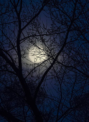Photograph - Mystic Moon by Eric Miller