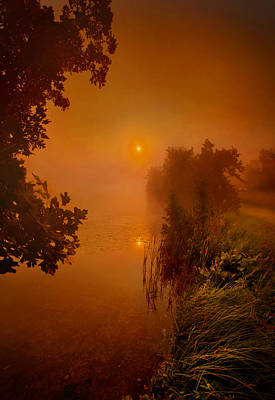 Photograph - Mystic Morn by Phil Koch