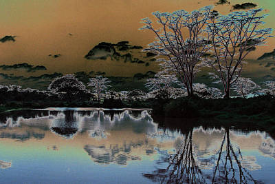 Photograph - Mystical Africa by Paula St James