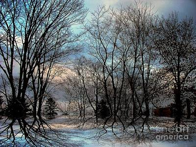 Photograph - Mystical by Elfriede Fulda
