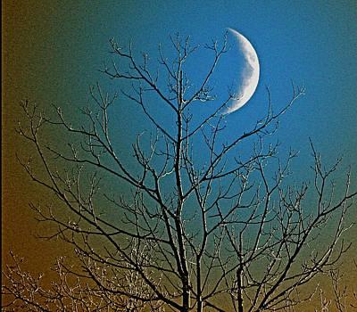 Winter Night Photograph - Mystical Moon by Nancy TeWinkel Lauren