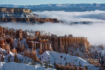 Photograph - Mystical Morning At Bryce Canyon, Utah by Sandra Bronstein