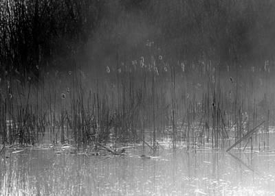 Photograph - Mystical Morning On The Lake by Jaroslaw Suchozebrski