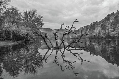 Photograph - Mystical Reflections by Debra and Dave Vanderlaan