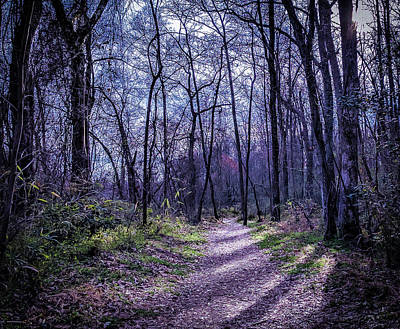 Photograph - Mystical Trail by Ant Pruitt