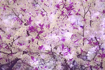 The Sakura Photograph - Mythical Spring by Irina Effa