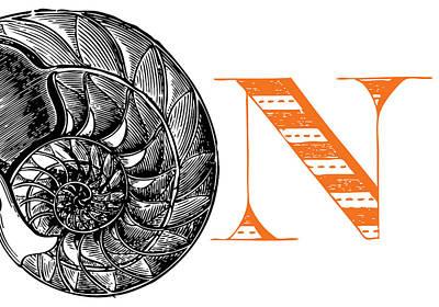 Animal Alphabet Digital Art - N Nautilus by Thomas Paul