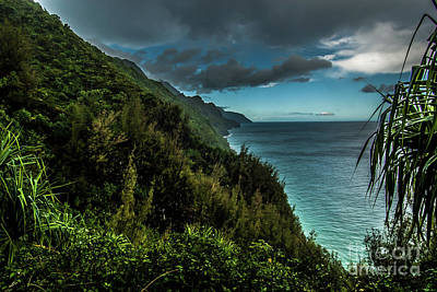 Photograph - Na Pali Trail Lookout Kauai Hawaii by Blake Webster