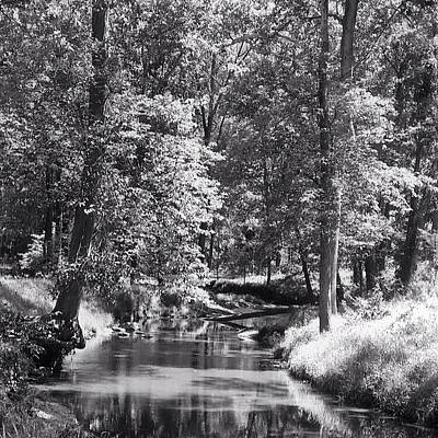 Art Print featuring the photograph Nadine's Creek In Black And White by Kathy Kelly