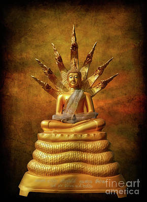 Snake Head Photograph - Naga Buddha by Adrian Evans