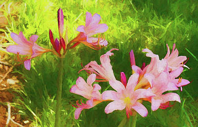 Floral Mixed Media - Naked Ladies 3 by Garland Johnson