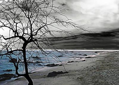 Photograph - Naked Tree by Munir Alawi