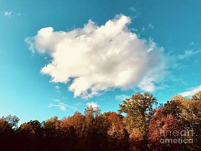 Photograph - Name That Cloud by Michael Krek