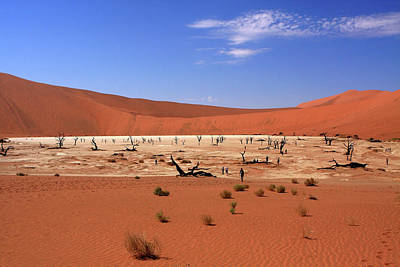 Photograph - Dead Vlei, Sossusvlei, Namibia, Southern Africa by Aidan Moran
