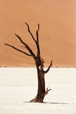 Isolated Photograph - Namib Desert by Nichola Denny