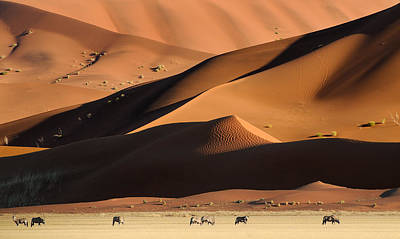 Sand Dunes Photograph - Namib Dunes by Muriel Vekemans