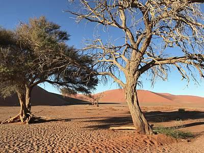 Painting - Namibia Sossusvlei 3 by Robert SORENSEN