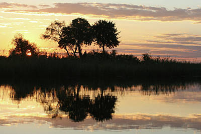 Photograph - Namibia River Sunset by Karen Zuk Rosenblatt