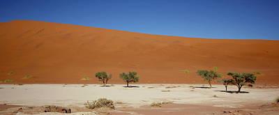 Painting - Namibia Sossusvlei 1 by Robert SORENSEN