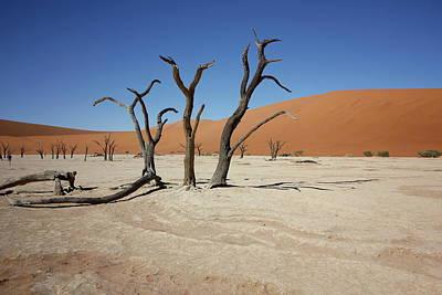Painting - Namibia Sossusvlei 4 by Robert SORENSEN