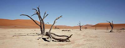 Painting - Namibia Sossusvlei 6 by Robert SORENSEN