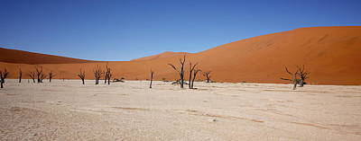 Painting - Namibia Sossusvlei 7 by Robert SORENSEN
