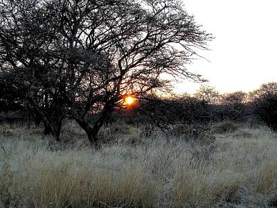 Photograph - Namibian Morning by Diane Height
