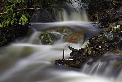 Photograph - Nancy Creek 2 by Loni Collins