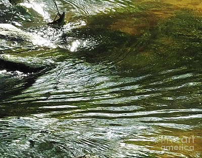 Photograph - Nancy Creek At Blue Heron Nature Preserve by Lizi Beard-Ward