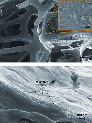 Nanotubes, Flame-resistant Coating, Sem Art Print