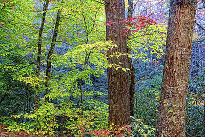 Photograph - Nantahala by HH Photography of Florida