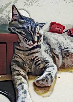 Prints Cat Photograph - Nap Number Ten by David G Paul