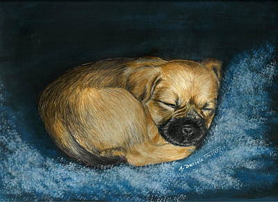 Puppy Mixed Media - Nap Puppy by Daniele Trottier