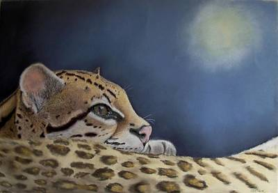 Painting - Nap Time  by Ceci Watson