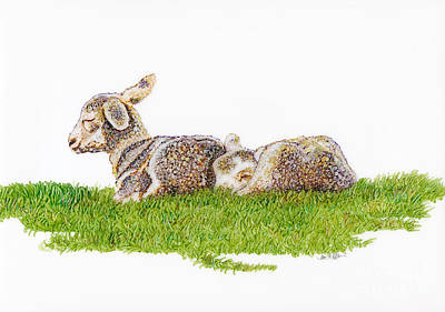 Sheep Mixed Media - Nap Time by Jan Killian