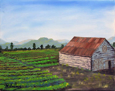 Napa Valley Vineyard Painting - Napa California Barn Vi by William Williams
