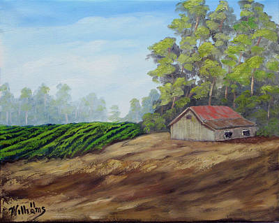 Napa Valley Vineyard Painting - Napa California Barn Vii by William Williams