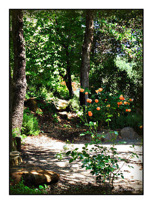 Photograph - Napa Rose Pathway by Joan  Minchak