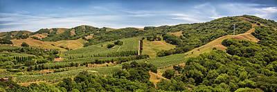 Photograph - Napa Valley California Panoramic by Adam Romanowicz