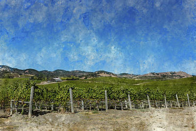 Photograph - Napa Valley California Vineyard Landscape by Brandon Bourdages