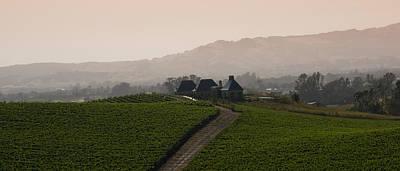 Zinfandel Photograph - Napa Valley by Peter Verdnik